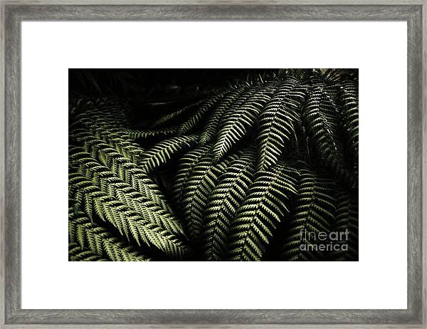 The Exotic Dark Jungle Framed Print