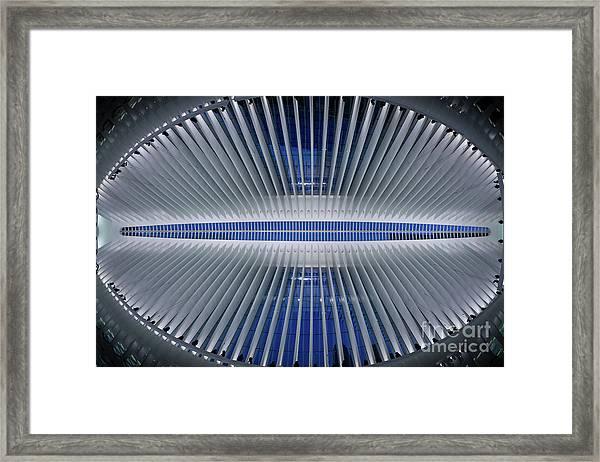 The Eye Of Oculus  Framed Print