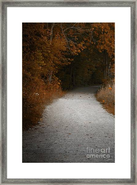 The Fall Path Framed Print