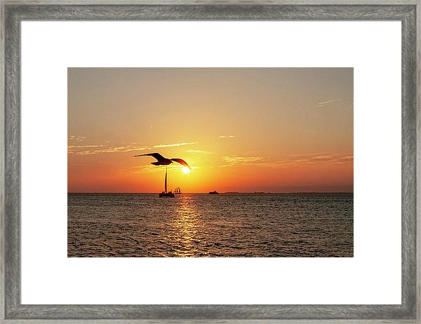 The Famous Key West Sunset  Framed Print