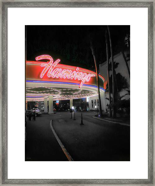 The Flamingo Framed Print