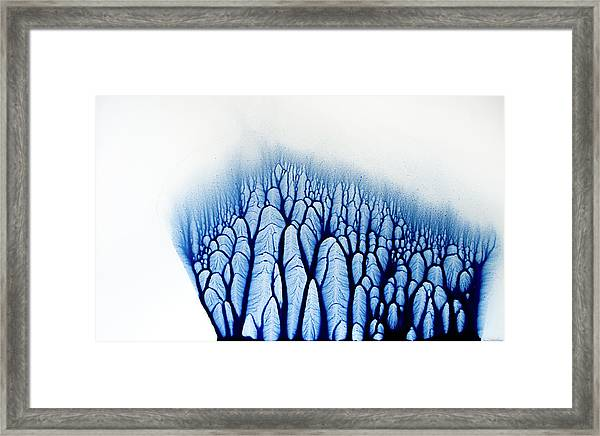 The Forest Tells A Story Framed Print