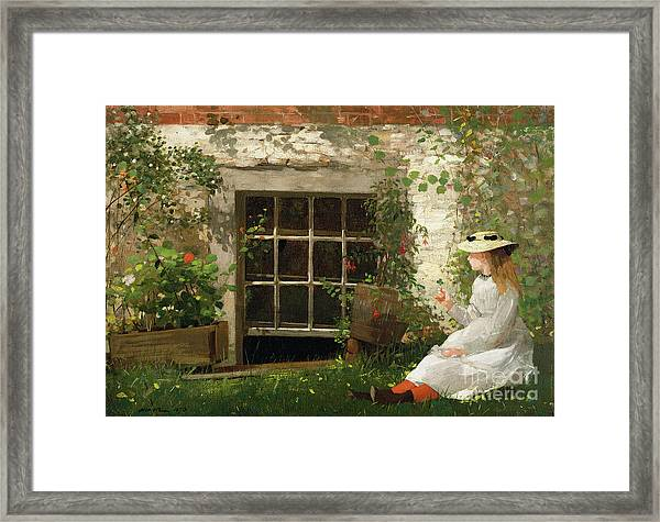 The Four Leaf Clover Framed Print
