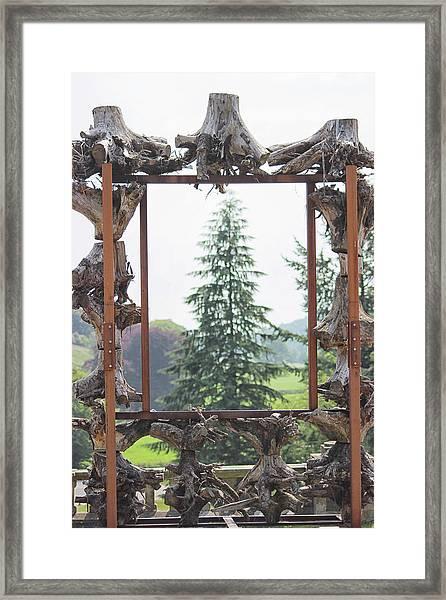The Framed Tree Framed Print