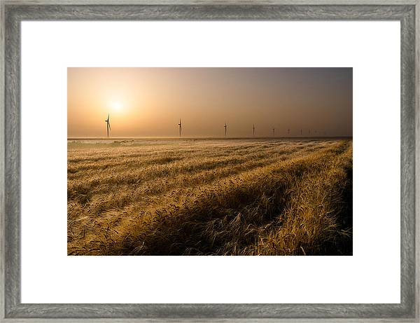 The Gifts Of Nature Framed Print