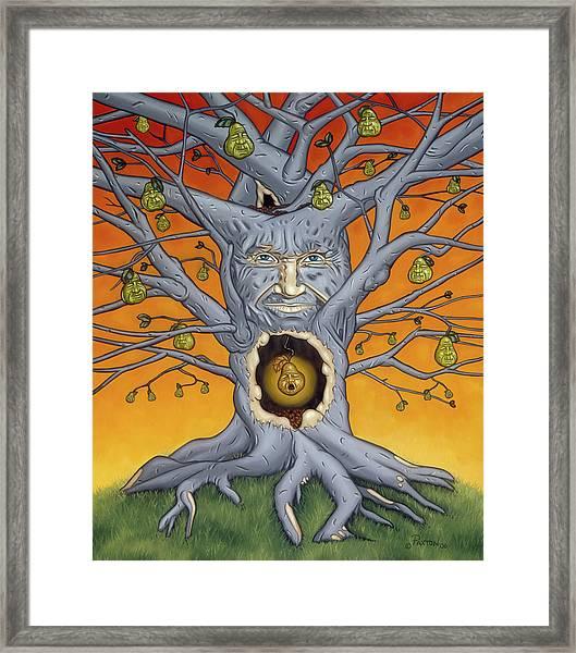 The Golden Pear Framed Print