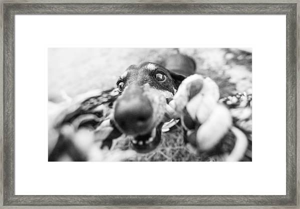 The Grab Framed Print