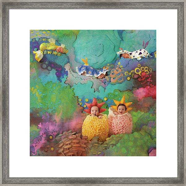 The Great Barrier Reef Framed Print by Anne Geddes