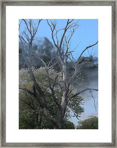 The Height Of Rodomontade Framed Print