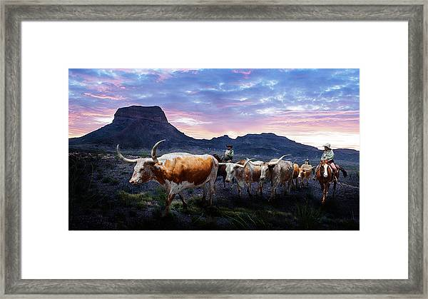 Texas Longhorns Blue Framed Print