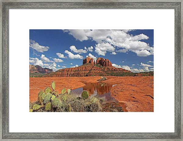 The High Desert Drinks Framed Print