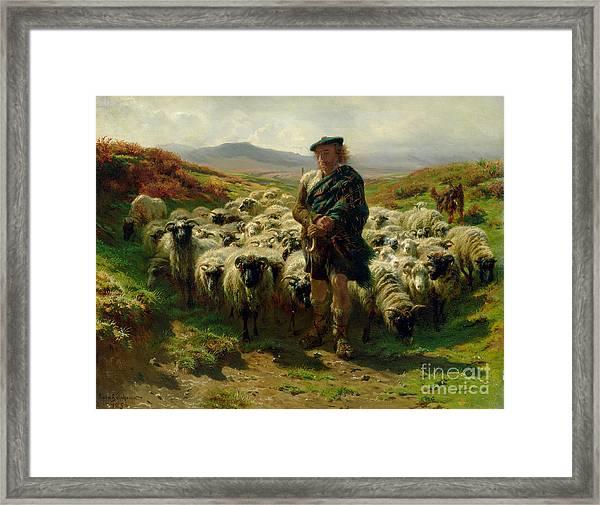 The Highland Shepherd Framed Print