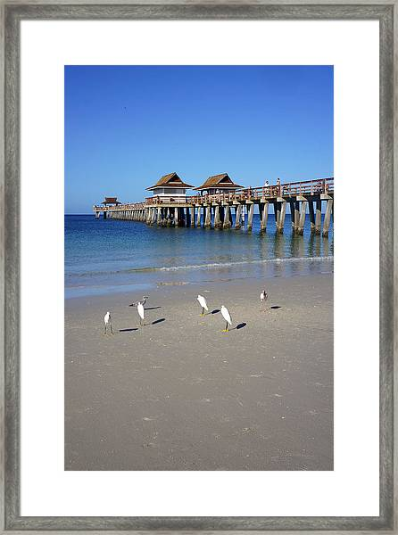 The Historic Naples Pier Framed Print