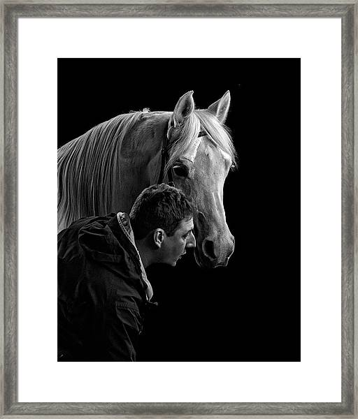 The Horse Whisperer Extraordinaire Framed Print