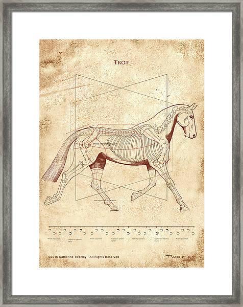 The Horse's Trot Revealed Framed Print
