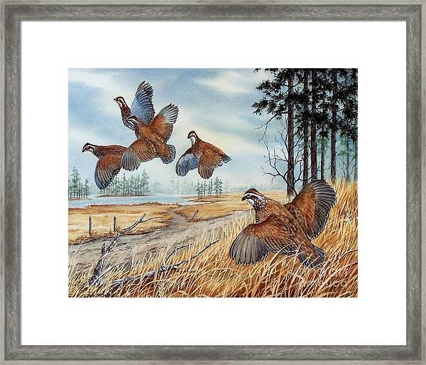 The Hunt  Sold Framed Print