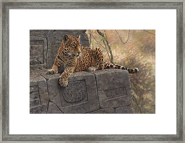 The Jaguar King Framed Print