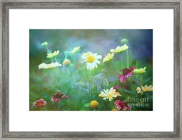 The Joy Of Summer Flowers Framed Print