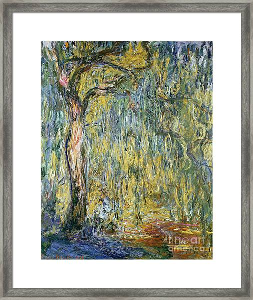 The Large Willow At Giverny Framed Print