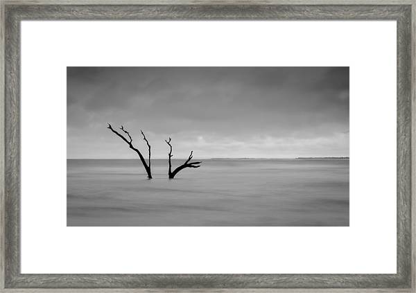 I'm Not Alone - Folly Beach Sc Framed Print