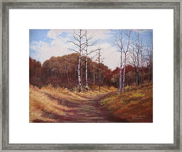 The Last Wilderness Framed Print