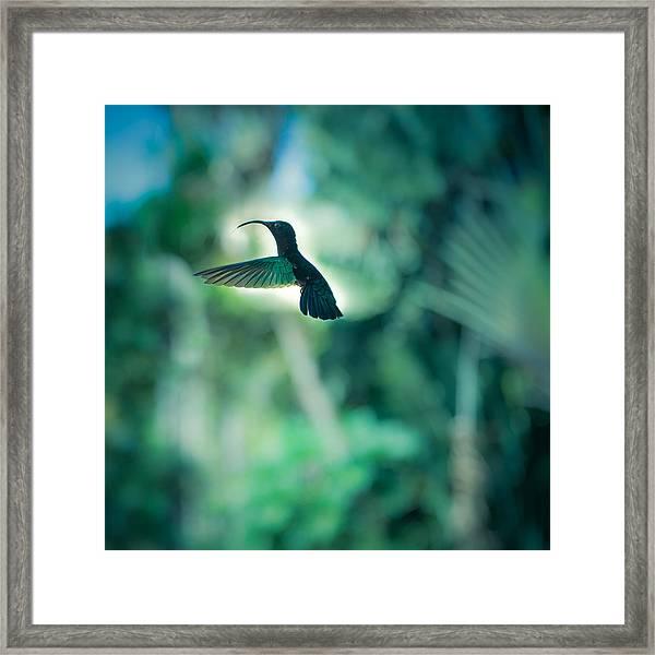 The Levitation Framed Print