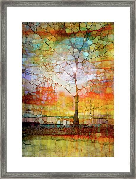 The Light Circle Framed Print