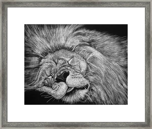 The Lion Sleeps Tonight Framed Print
