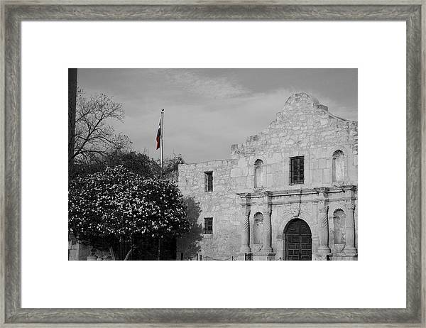 Framed Print featuring the photograph The Lone Star by Dylan Punke