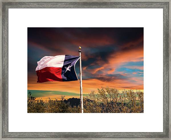 The Lone Star Flag Framed Print