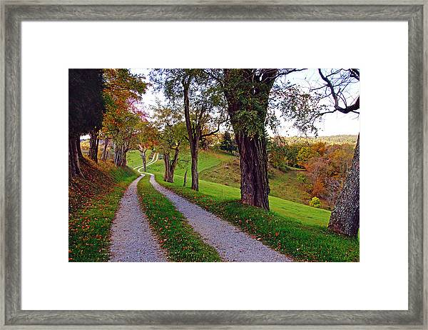 The Long Road In Autumn Framed Print