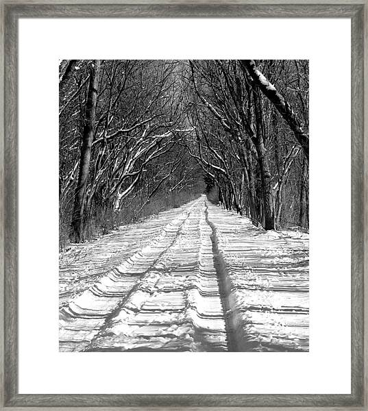 The Long Winter Walk Framed Print