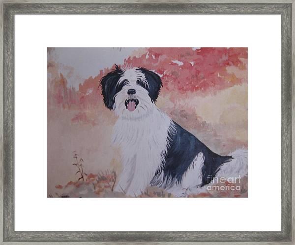 The Loyal Royal Dog. Framed Print