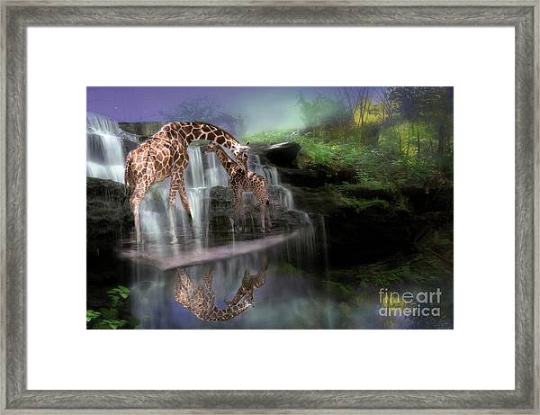 The Magical Bond Framed Print