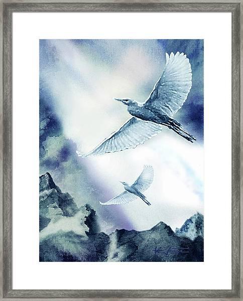 The Magic Of Flight Framed Print