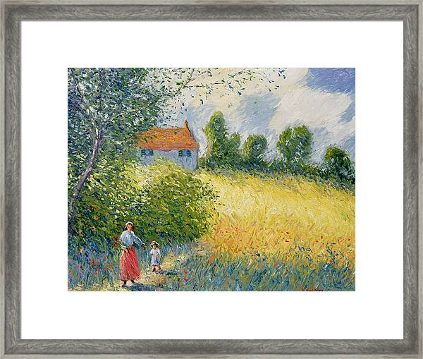 The Meadow Path  Framed Print