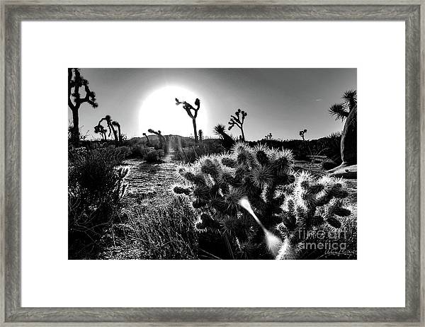 Merciless, Black And White Framed Print