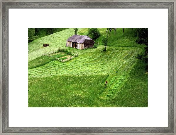The Mower Framed Print