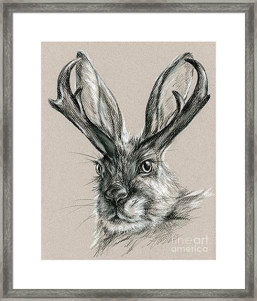 The Mythical Jackalope Framed Print