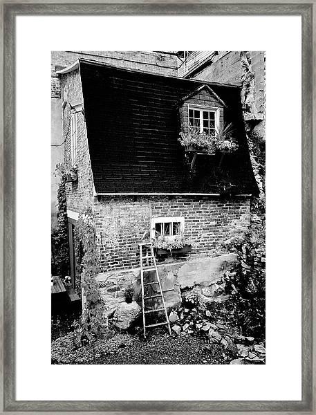 The Nest Framed Print