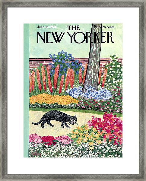New Yorker Cover - June 18, 1960 Framed Print