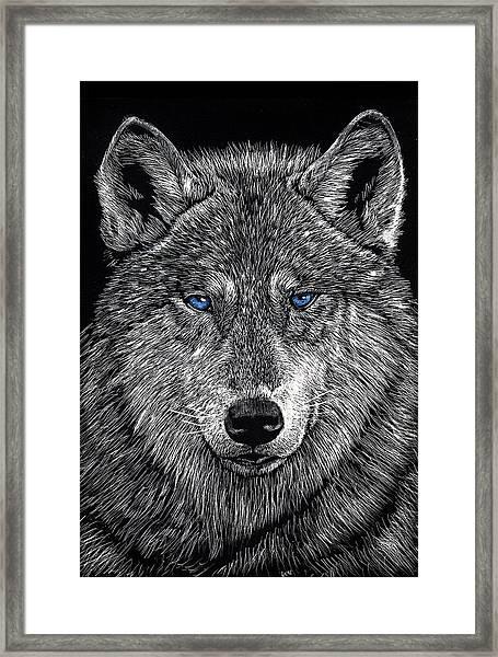 The Obligitory Wolf Framed Print
