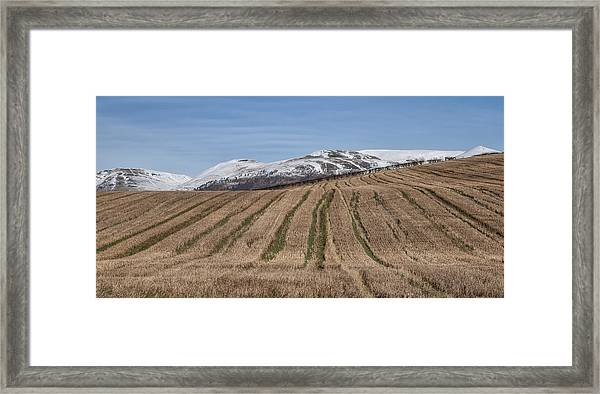 The Ochil Hills In Clackmannanshire Framed Print