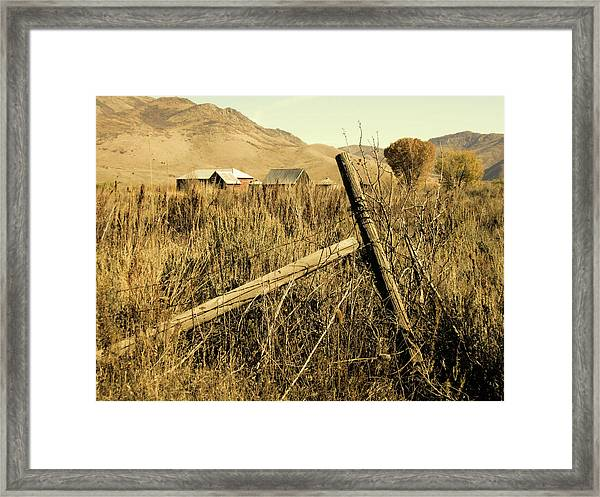 The Old Fence Post Framed Print