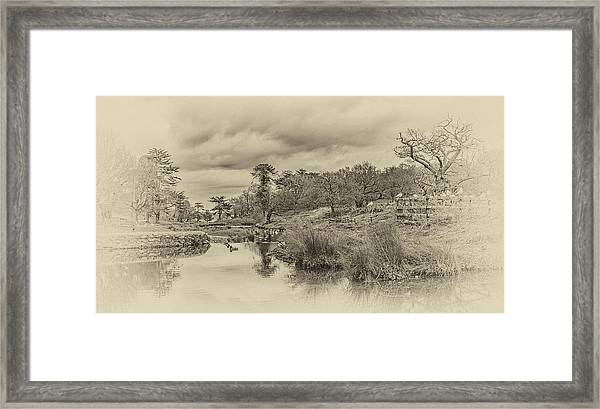 Framed Print featuring the photograph The Old Pond by Nick Bywater