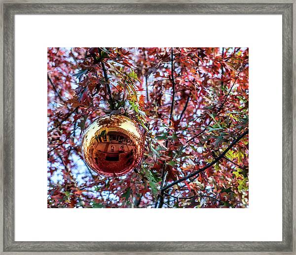 The Ornament Framed Print