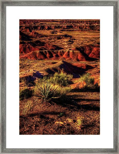 The Painted Desert From Kachina Point Framed Print