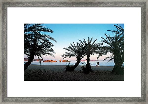 The Palmforest Of Vai - The Pardise Of Crete Framed Print