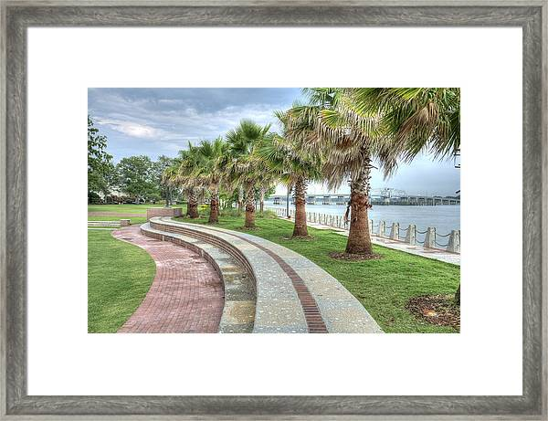 The Palms Of Water Front Park Framed Print