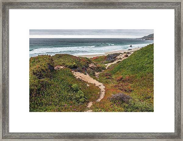 The Path Framed Print